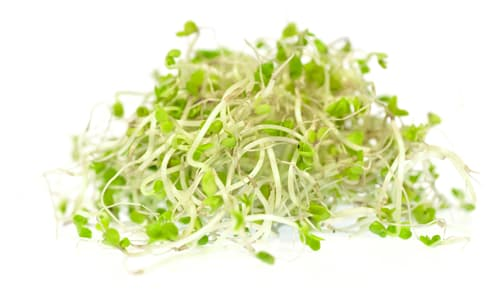 Local Organic Sprouts, Broccoli- Code#: PR100260LCO
