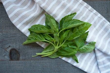 Organic Basil, Bunched - Local/ BC- Code#: PR100459LCO