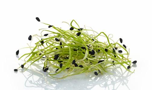 Local Organic Sprouts, Garlic - Island Grown- Code#: PR100919LCO