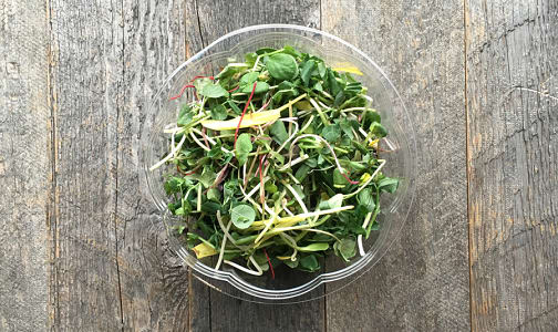 Local Organic Salad Mix, Gourmet - May sub Peashoots- Code#: PR100251LCO