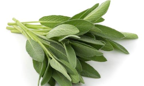 Organic Herbs, Sage- Code#: PR100899NCO