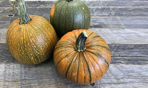 Local Organic Pumpkin, Sugar Pie - May Sub BC- Code#: PR101134LCO