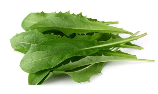 Local Organic Dandelion, Green- Code#: PR142712LCO