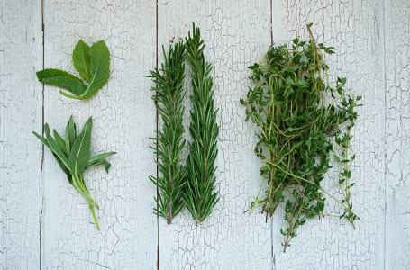 Organic Herbs, Roasting Blend- Code#: PR175611NCO