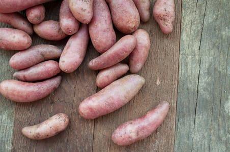 Local Organic Potatoes, Fingerling- Code#: PR211349LPO