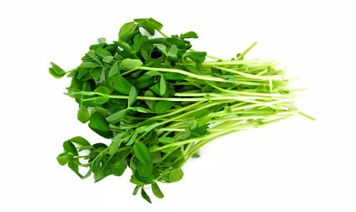 Local Sprouts, Pea Shoots- Code#: PR101148LCN
