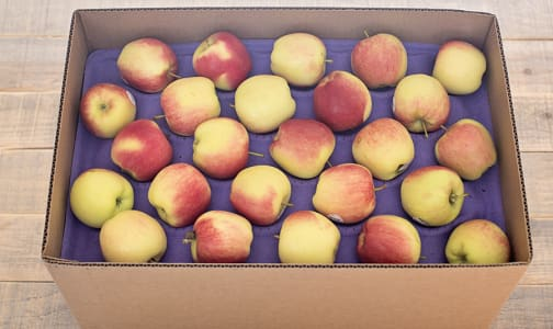 Local Organic Apples, Ambrosia - CASE- Code#: PR217053LCO