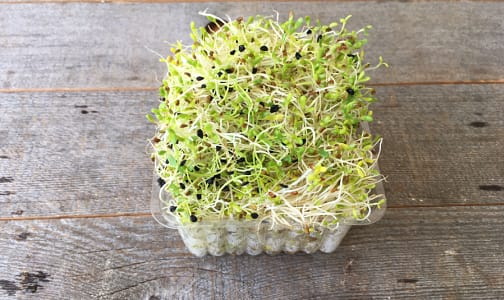 Local Organic Sprouts, Garlic - Issland Grown- Code#: PR100919LCO