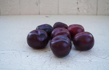 Organic Plums, Black Amber- Code#: PR101006NPO