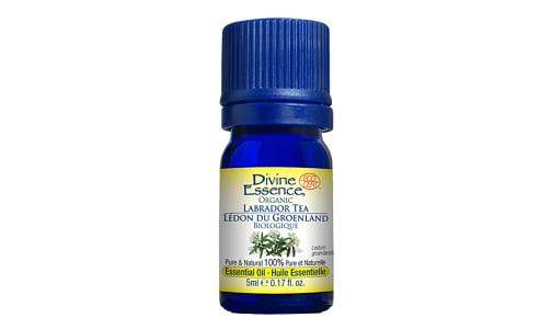 Organic Labrador Tea- Code#: PC3568
