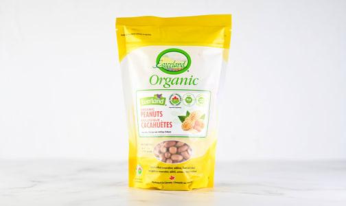 Organic Peanuts, Raw- Code#: BU0639