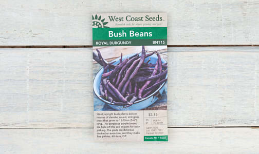 Royal Burgundy  Bush Bean Seeds- Code#: BU1763
