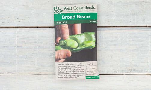 Windsor  Broad Bean Seeds- Code#: BU1767