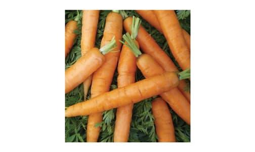 Little Fingers  Baby Carrot Seeds- Code#: BU1783