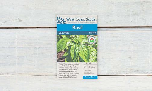 Organic  Genovese  Basil Seeds- Code#: BU1822