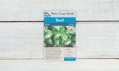 Organic  Dolly  Basil Seeds- Code#: BU1823