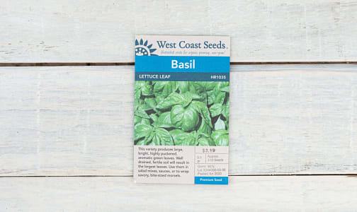 Lettuce Leaf  Basil Seeds- Code#: BU1825