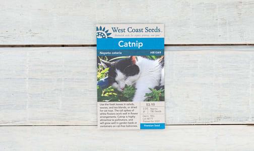 Catnip Seeds- Code#: BU1827