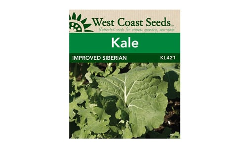 'Improved Siberian  Kale Seeds (OP)- Code#: BU1840