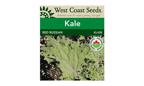 Red Russian  Kale Seeds- Code#: BU1842