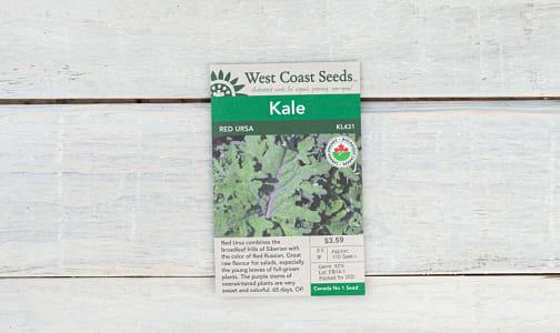 Organic  Red Ursa  Kale Seeds- Code#: BU1843