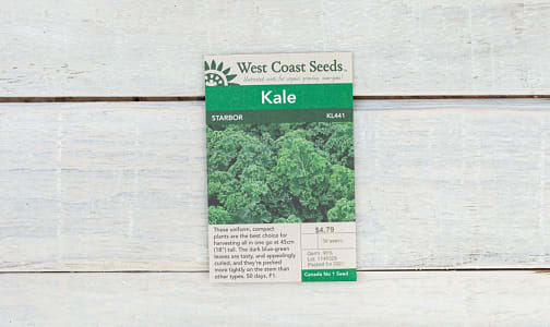 Starbor  Kale Seeds- Code#: BU1844