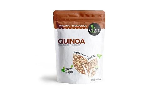 Organic Tricolor Quinoa- Code#: DN0292