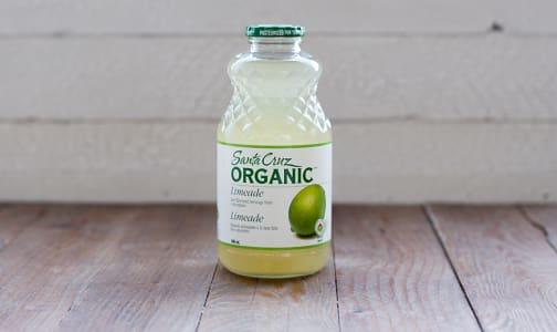 Organic Limeade- Code#: DR141