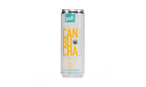 Organic Canbucha Ginger Lemonade- Code#: DR1597