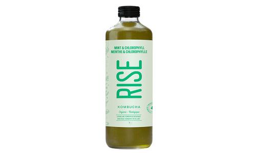 Organic Mint Chlorophyll Kombucha- Code#: DR549