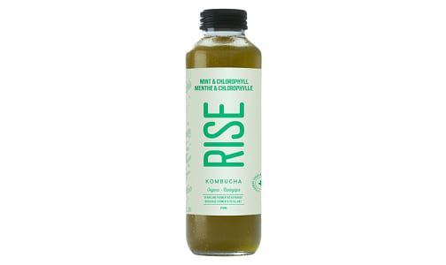 Organic Mint Chlorophyll Kombucha- Code#: DR569