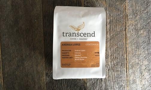 Andrea Lopez Espresso -Coffee- Code#: DR7213