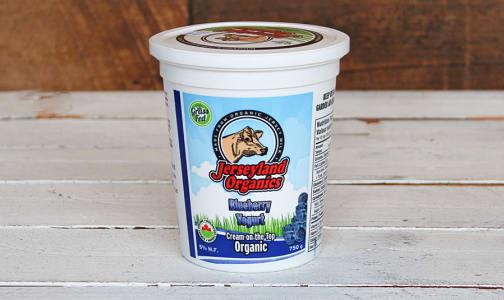 Organic Blueberry Yogurt- Code#: DY0019