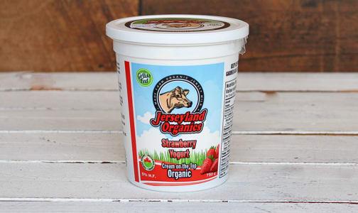 Organic Strawberry Yogurt- Code#: DY0021