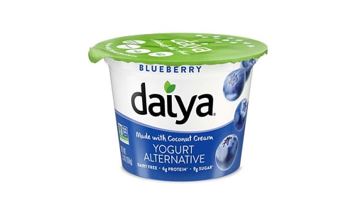 Blueberry Dairy-Free Yogurt- Code#: DY0030