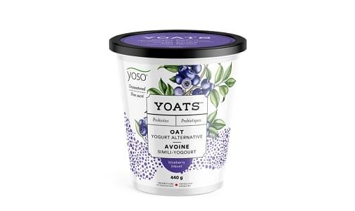 Unsweetened Blueberry Yoats- Code#: DY0144