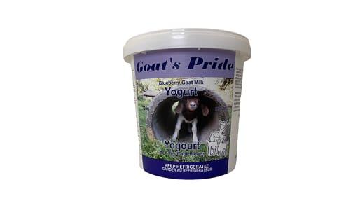 Whole Goat Milk Blueberry Yogurt- Code#: DY0185