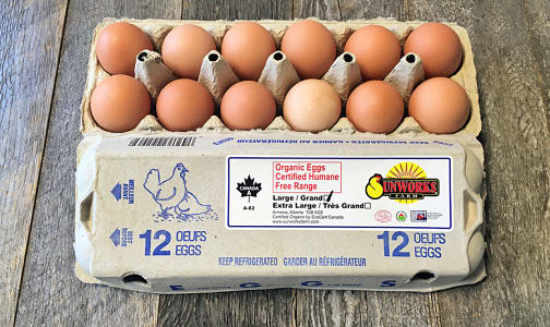 Organic Brown Eggs- Code#: EG0002