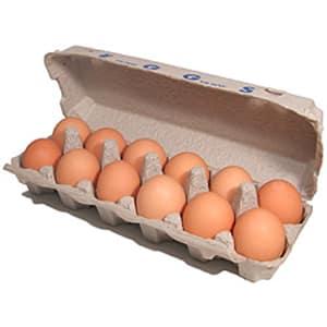 Organic Eggs - Large- Code#: EG100