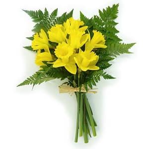 Daffodil Bouquet- Code#: FF1242