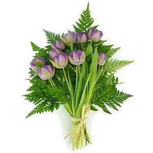 Tulip Bouquet- Code#: FF1243