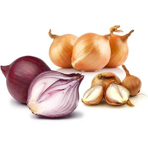 Organic Onion Mix- Code#: KIT3042