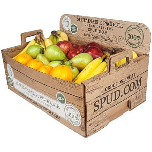 Organic Large Office Fruit Box (Banana - lite)- Code#: OFFICE21