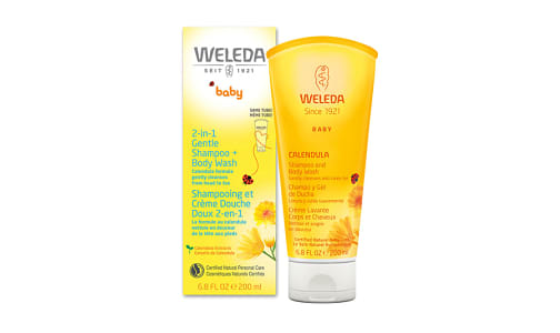 2 in 1 Gentle Shampoo and Body Wash- Code#: PC1505