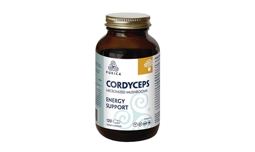 Organic Cordyceps- Code#: PC410391