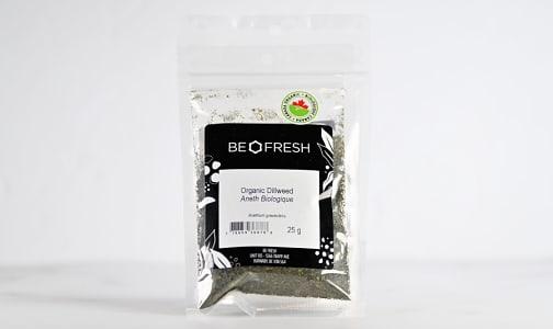 Organic Organic Dillweed, Cut- Code#: PL0067