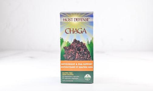 Organic Chaga (Inonotus Obliquus) Capsules- Code#: TG150