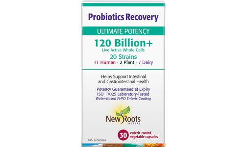 Probiotics Recovery- Code#: VT0813