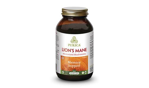 Lion's Mane- Code#: VT0995