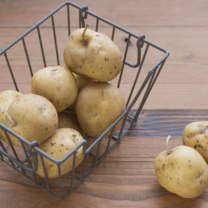 Organic Potatoes, Imperfect - Russet- Code#: PR147413NPO